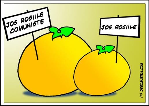 portocale vs rosii
