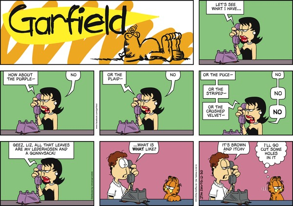 strip2012-12-30_4